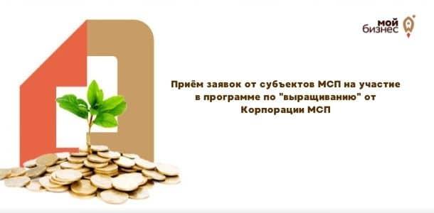 "Приём заявок от субъектов МСП на участие в программе по ""выращиванию"" от Корпорации МСП"